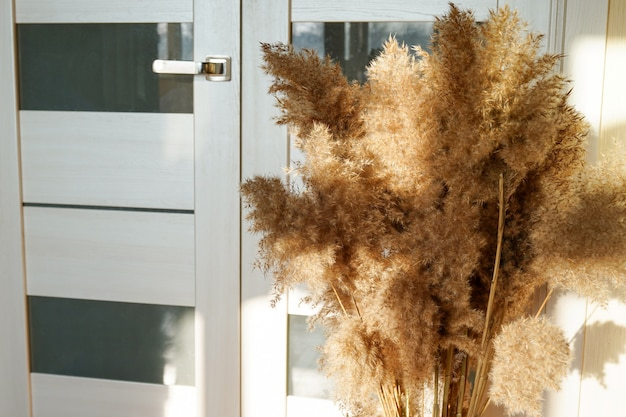 パンパスグラスは、部屋の装飾用の花束に集められています。ドライフラワーの花束。花のミニマルな家のインテリアの自由奔放に生きるスタイル。