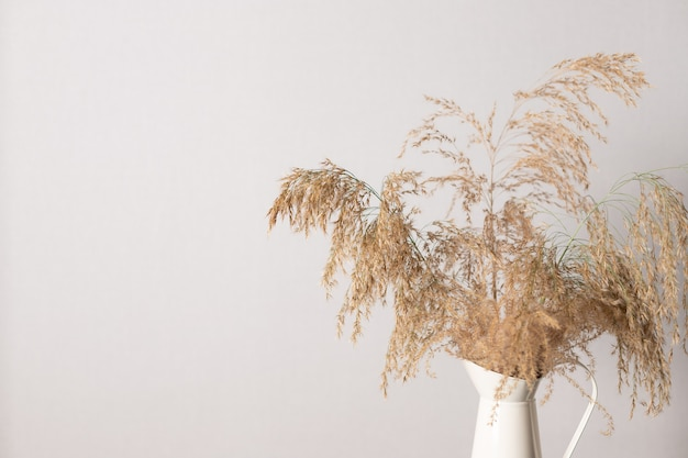 Ветка травы пампасов в вазе