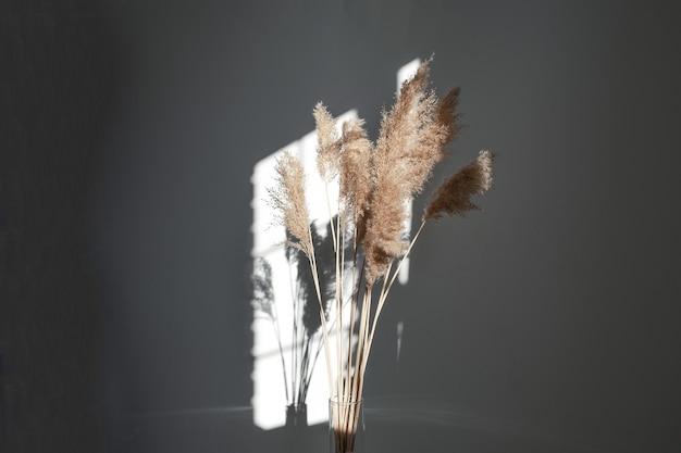 중립적인 색을 가진 억새 풀 갈대 깃털 줄기 말린 억새 풀 장식 깃털 꽃