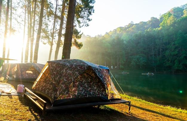 Озеро пангунг и сосновый лес с восходом солнца в мае хонг сон, таиланд