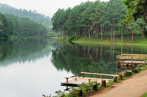 Панг унг. красивое лесное озеро утром. мэй хонг сон. таиланд