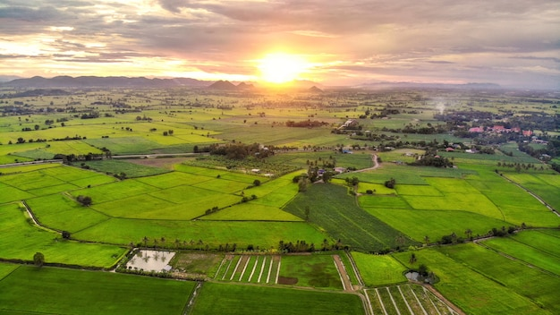 Panorama of aerial view at sunset over mountain on rice fields in countryside