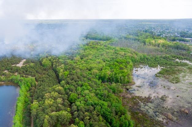 Панорама с воздуха: лесной пожар сжигает деревья сухой травой в лесу в калифорнии