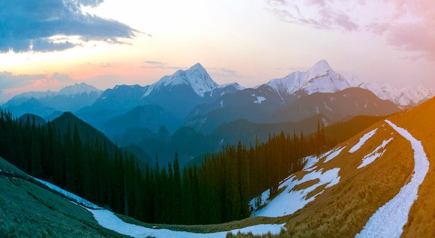 Panorama of beautiful spring morning in carpathian mountains. valley with dry grass and snow, transparent fresh air, dense evergreen forest and soft sun glow over distant snow-covered mountain range.