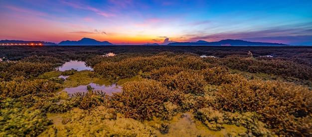 라와이 바다의 산호초 위의 일출 빛에서 파노라마 아름다운 일몰 또는 일출 바다 놀라운 구름
