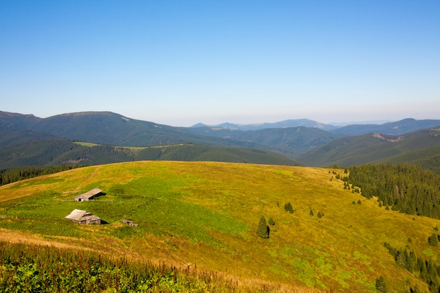 Panorama of carpathian mountains in summer sunny day. house in mountains