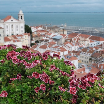 Panorama from view point santa lucia in lisbon overlooking the old city center, churches, the pantheon and the aflama area
