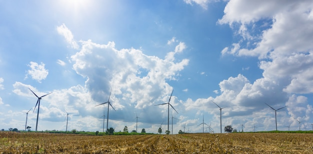 Panorama of many wind turbine in meadow.