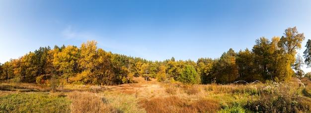 Панорама осеннего леса в россии