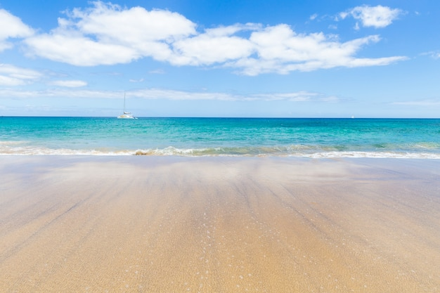 Панорама прекрасного пляжа и тропического моря лансароте. канарейки