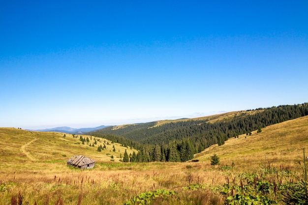 Панорама карпатских гор в солнечный летний день. дом в горах