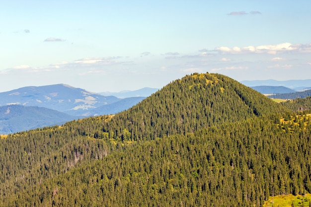 Панорама карпатских гор в солнечный летний день.