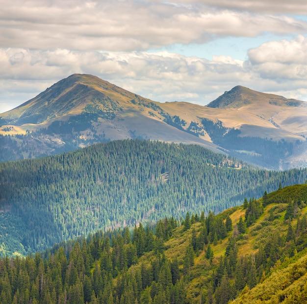 Панорама карпатских гор в летний солнечный день