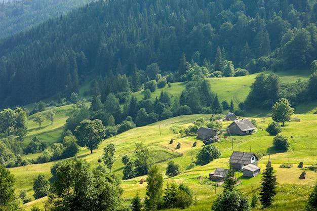 Панорама свежих зеленых холмов в карпатах в солнечный весенний день
