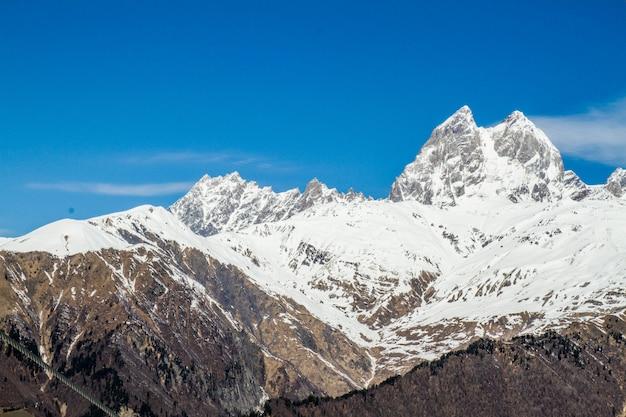 Панорама грузинской горы ужба и снежная шапка ледника