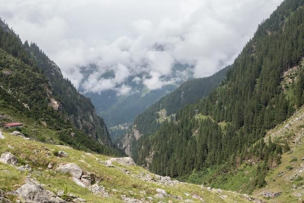 Панорама гор на маршруте моста trift в национальном парке швейцарии, европе. драматическое облачное небо и солнечный летний пейзаж