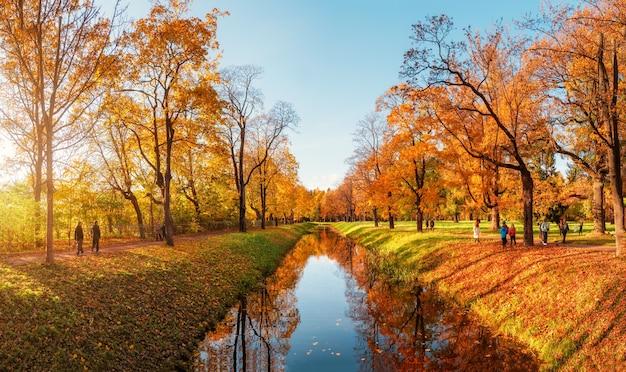 歩く人がいる秋の公園のパノラマ。ツァールスコエセロー。ロシア。
