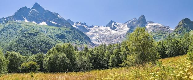 Панорама кавказских гор с ледниками и зеленым лесом