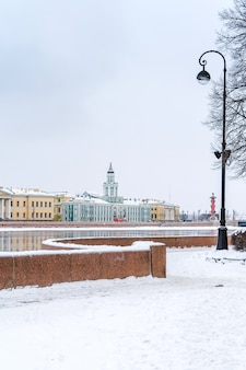 Панорама города, замерзшая нева и вид на кунсткамеру в санкт-петербурге, зимний пейзаж