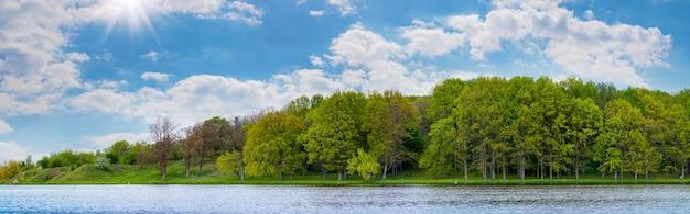 晴天時の川の向こうの森のパノラマ。夏の緑の森。