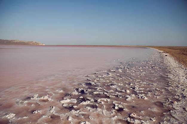 ロシア、クリミア半島の夏の大きな干上がったピンクの湖のパノラマ