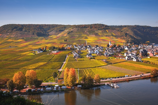 秋、ドイツのラインラント=プファルツ州のモーゼル川の渓谷のパノラマ
