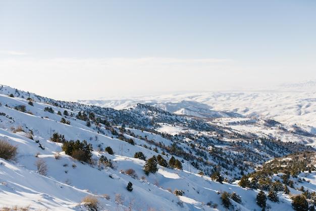 リゾートの峠の頂上から開く天山山脈のパノラマ