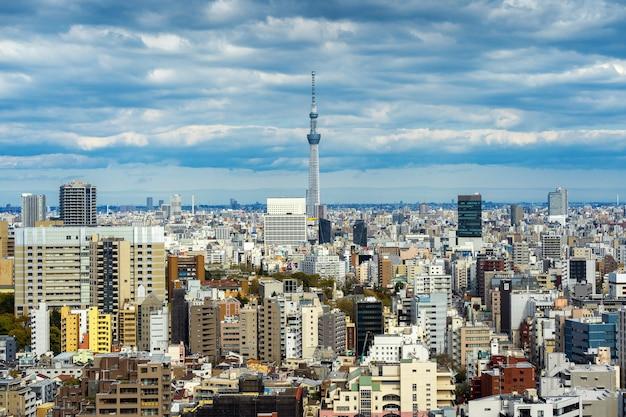 일본에서 도쿄 풍경의 파노라마입니다.