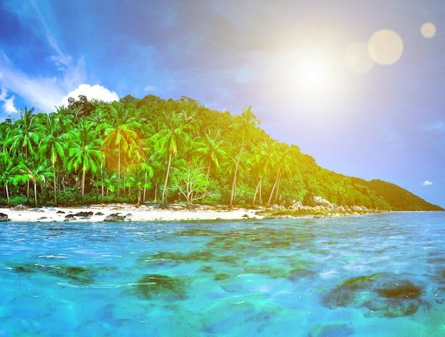 Панорама тропического острова с атоллом в индийском океане. необитаемый и дикий субтропический остров с пальмами. голубая чистая вода океана. природный пейзаж. фон путешествия. концепция праздника и отпуска