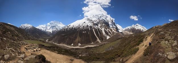 Panorama of pathway from samdo village to larke pass between peaks of himalayas in manaslu region