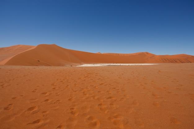 Panorama of red dunes from hidden vlei, sossusvlei namibia