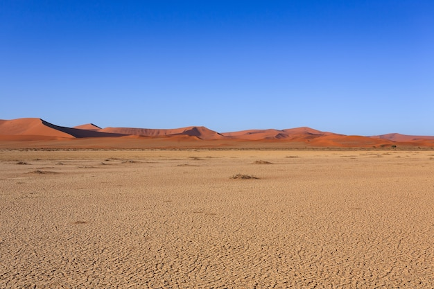 Panorama of red dunes from sossusvlei namibia