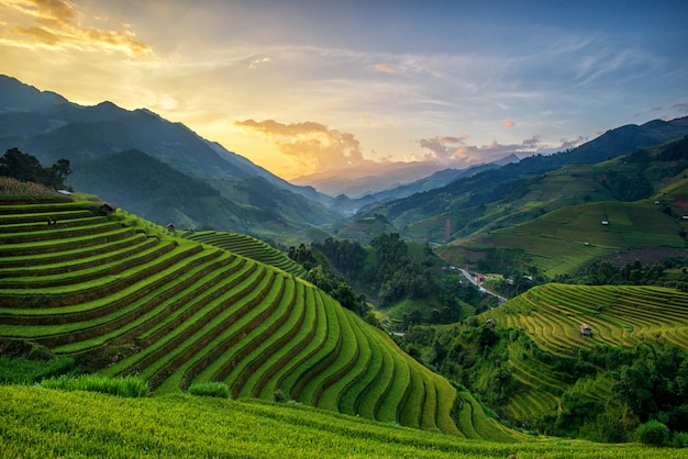 Panorama rice fields on terraced in sunset at mu cang chai