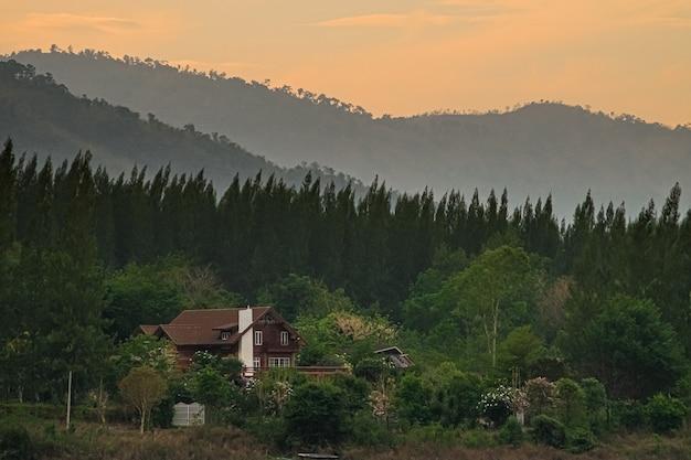 산 풍경의 파노라마 풍경