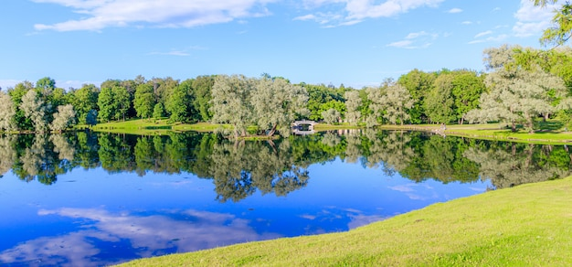 Panorama of summer park .
