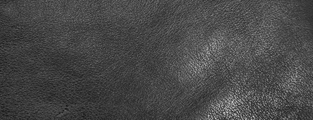 Panorama texture of black sheepskin cow leather processed