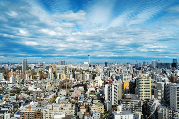 Panorama of tokyo cityscape in japan.