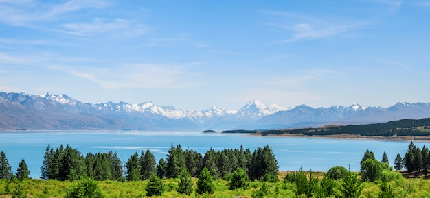 Panorama view of beautiful scene of mt cook in summer beside the lake with green tree and blue sky. new zealand i