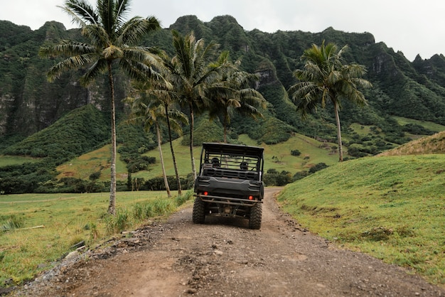 Panorama view of jeep car in hawaii