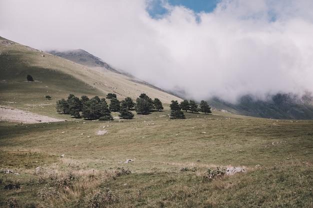 ロシア、コーカサス、ドンベイ国立公園の森と山のシーンのパノラマビュー。劇的な青い空と日当たりの良い風景