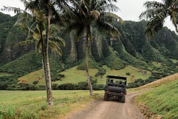 ハワイのジープ車のパノラマビュー
