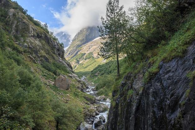 러시아 코카서스 돔베이 국립공원에 있는 산의 탁 트인 전망. 여름 풍경, 햇살 날씨, 극적인 푸른 하늘과 화창한 날
