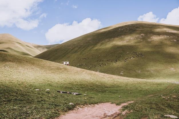 Панорама гор в национальном парке домбай, кавказ, россия, европа. драматическое голубое небо и солнечный летний пейзаж