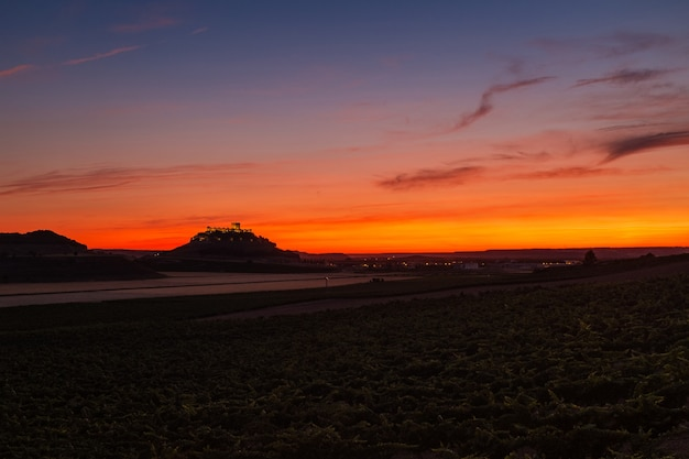 Панорама виноградников и полей в сумерках на рибера-дель-дуэро в испании.