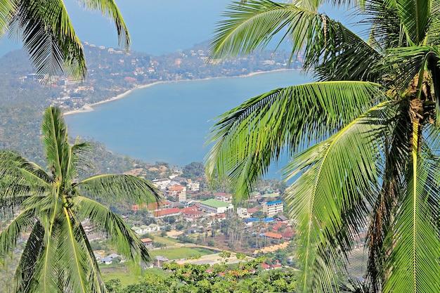 Панорамный вид на залив и город