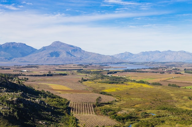 Panorama of a vineyard in the south of franschhoek close to cape town. stellenbosch. south africa