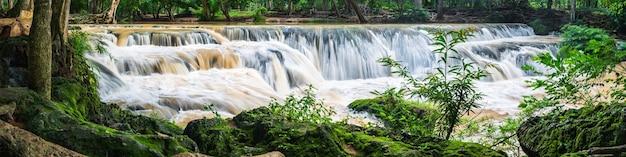 Панорама водопада в лесу