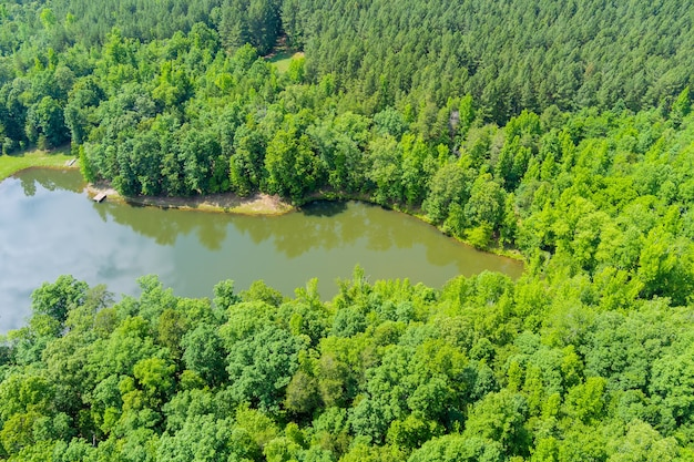 Панорамный вид с воздуха на горы голубого озера между зеленым летним лесом в кампобелло