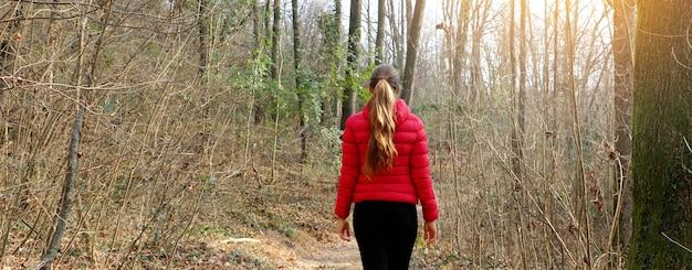 Панорамный вид потерянной женщины, идущей в одиночестве по лесной тропе осенью или зимой