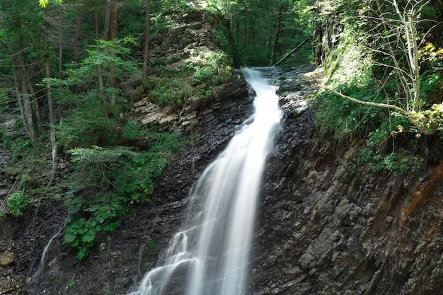 パノラマの美しい深い森の滝